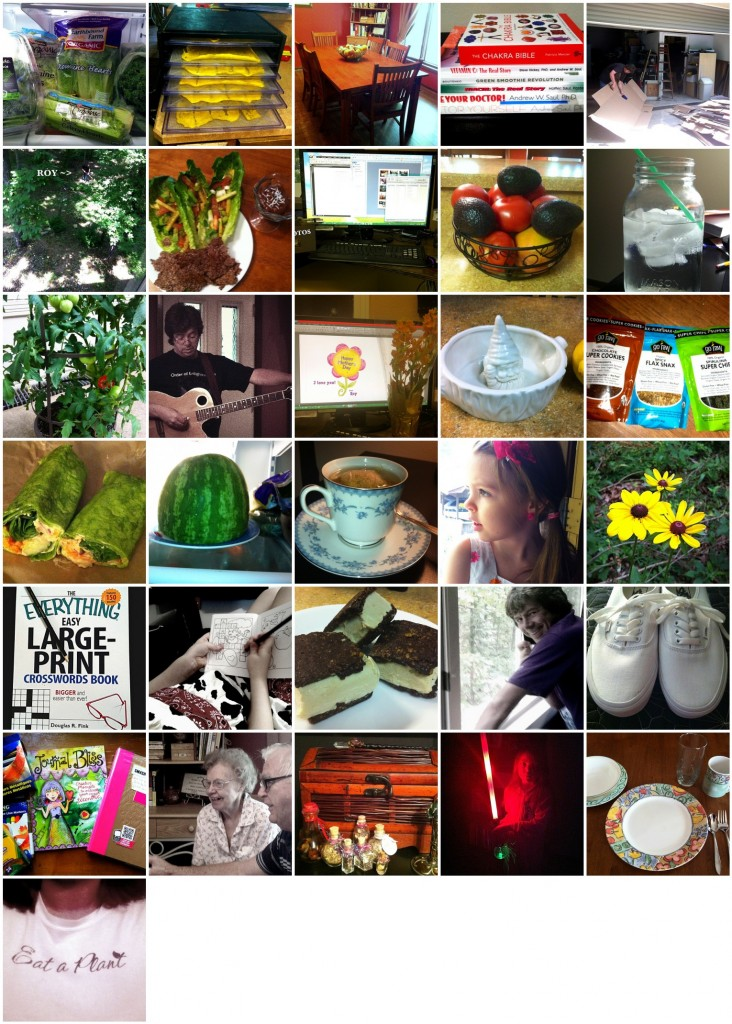 May 365 Collage